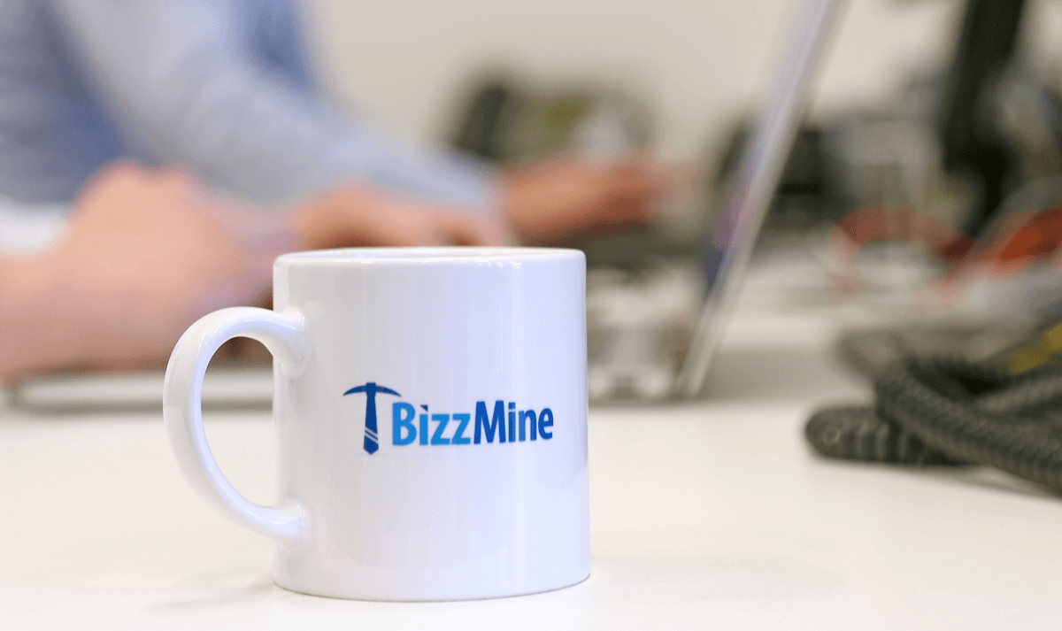 BizzMine Career Developer